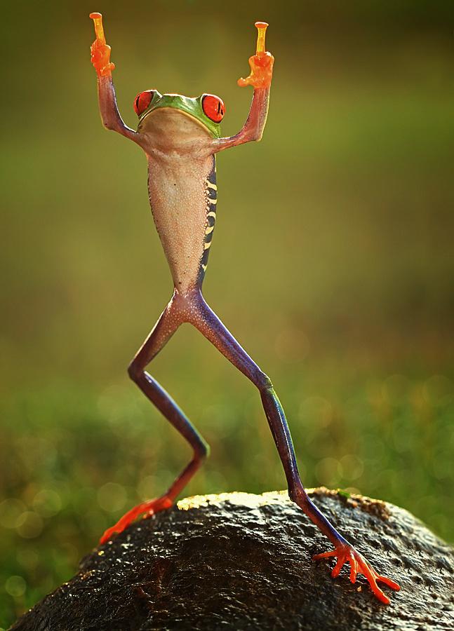 Shikhei Goh of Indonesia Frog flipping the double-bird not photoshopped
