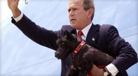 President George W. Bush waves to the crowd as he carries his dog Barne' atop the steps of Air Force One, August 6, 2002 and heads for Marine One in Waco, Texas, en route to his ranch in Crawford, Texas. / PAUL J. RICHARDS / AFP / GETTY IMAGES
