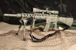 bushmaster_ar-15_in_your_underbrush_20110510_1571267550
