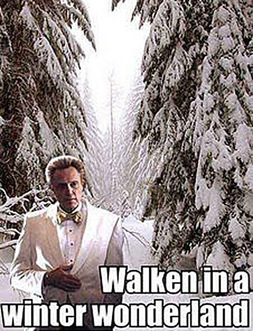 thats_not_punny_funny_images_captions_christopher_walken_wonderland