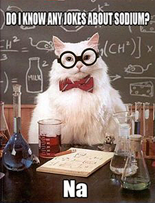thats_not_punny_funny_images_captions_professor_cat_jokes_about_sodium_na