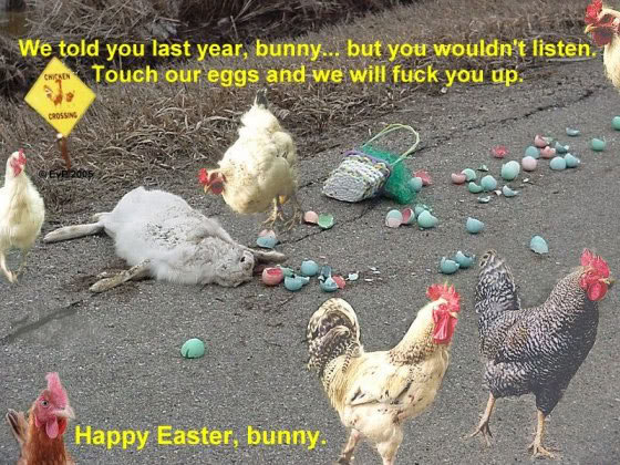 easter humor chickens killed easter bunny