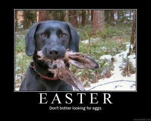 easter humor dog killed rabbit