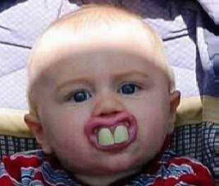 easter humor funny picture baby bunny teeth pacifier