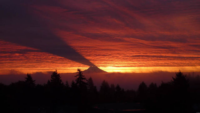 Mt Rainier casting a shadow on the clouds