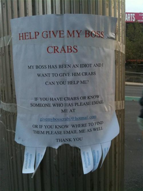 sign wanting to give boss crabs