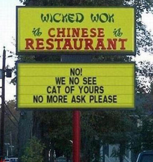 wicked-wok no see missing cat no ask