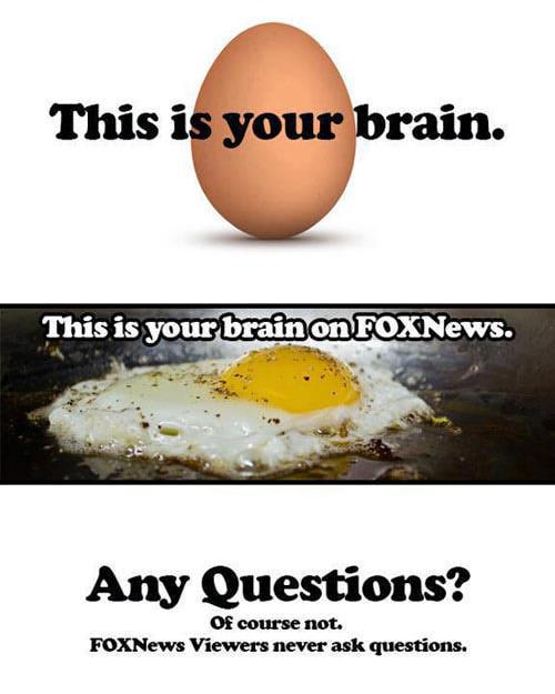 brain-on-fox