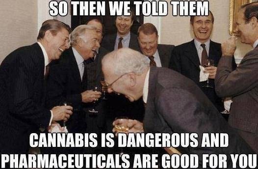 cannabis-dangerous
