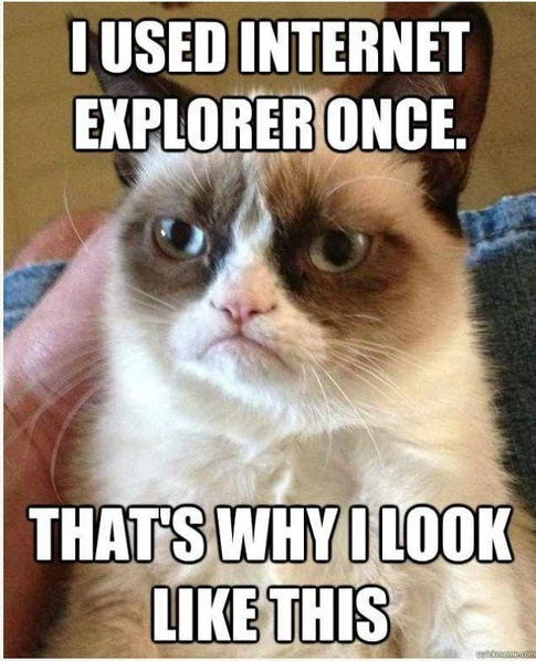 grumpy cat IE