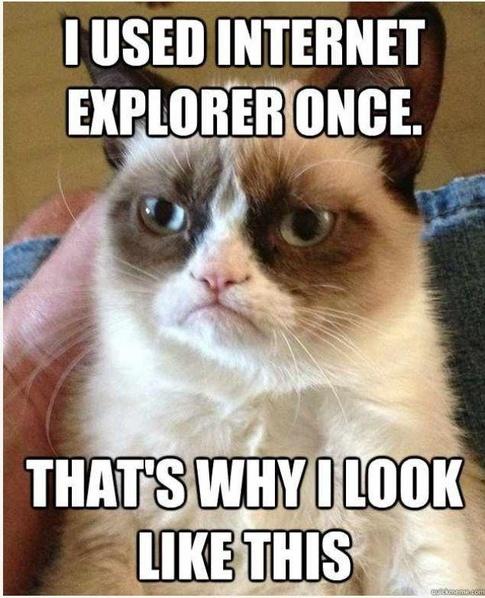 grumpy cat IE