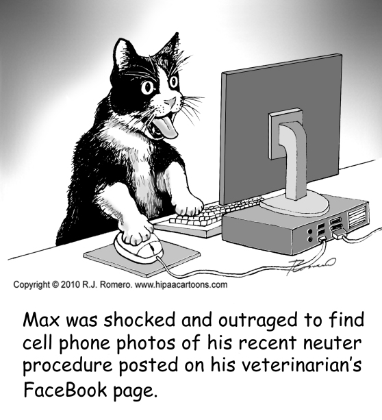 cartoon-cat-on-computer-sees-photos-on-facebbook_s107
