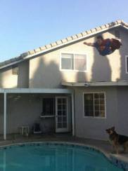 ... and leap off of roofs....