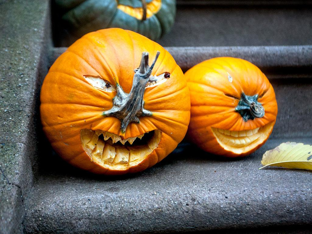 Scary Pumkins Jack O Lantern Motley News Photos And Fun