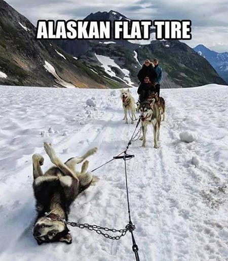 Alaska flat tire
