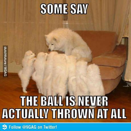 ball-never-thrown