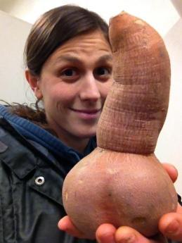 Penis-shaped sweet potato.