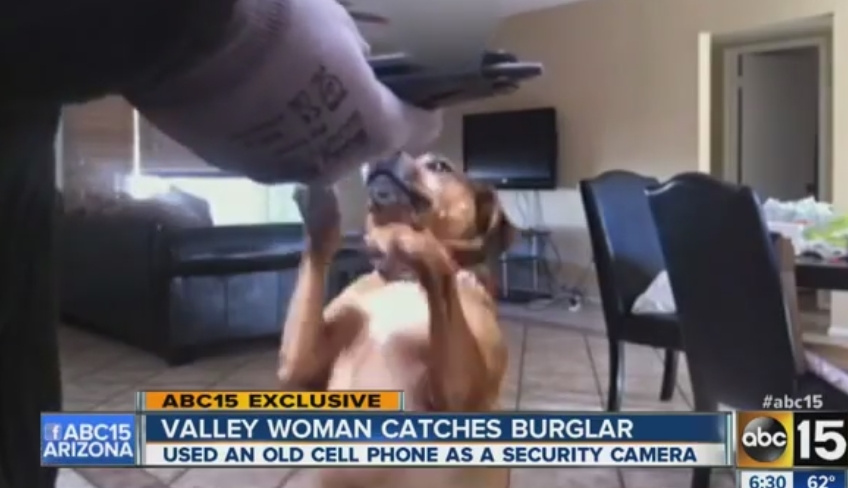 tempe-az-woman-watches-burglar-feeding-dog-treats-via-camera