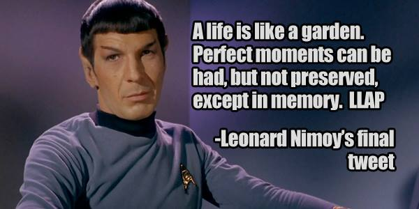 Leonard-Nimoy-meme-04