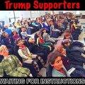 trump-supporters-dummies